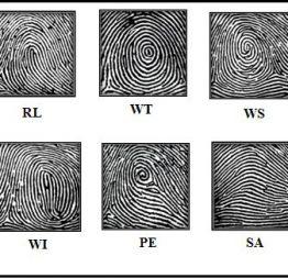 Đăng kí tham gia buổi Scan vân tay 10 ngón MIỄN PHÍ bằng công nghệ Sinh trắc dấu vân tay